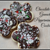 Chocolate Ganache and Pepperment Cookies