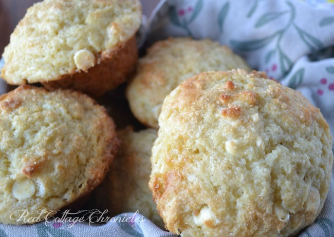 Gay Lea Lemon Smooth Cottage Cheese muffin recipe