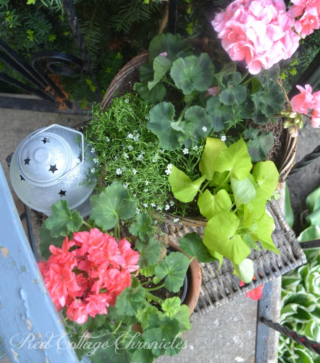 A small porch gets big curb appeal with a few potted plants