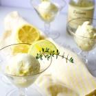 Boozy Frozen Limoncello Dessert