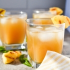 5 Fabulous Iced Tea Recipes You Will Love for Summer