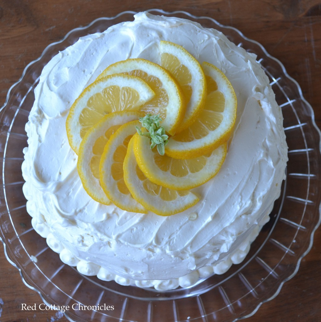 curd cake 2