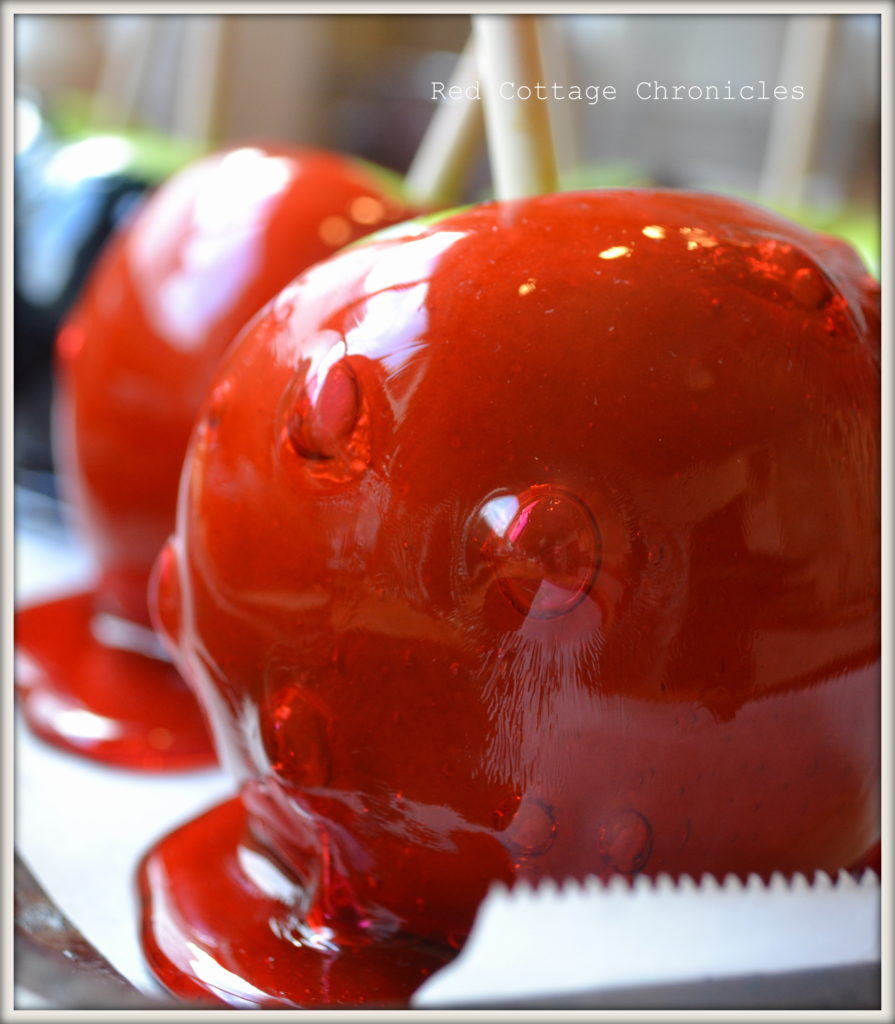 candy apples 6