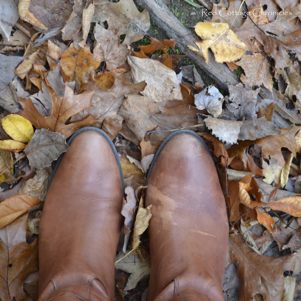 crunchy leaves under foot