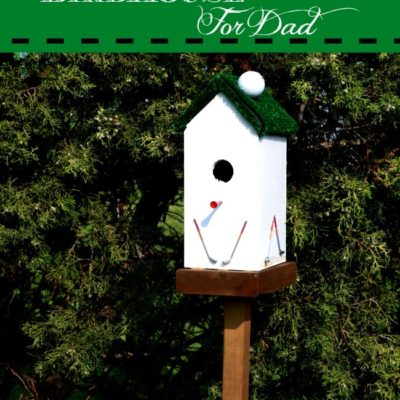 Birdhouse for Golfers