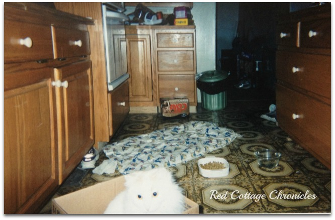 Kitchen Circa 1995