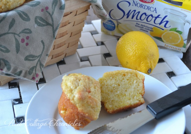 Gay Lea Smooth Cottage Cheese Muffins