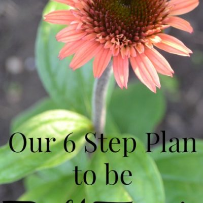 Our Debt Free Plan