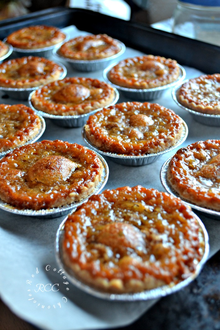 traditional Canadian butter tart