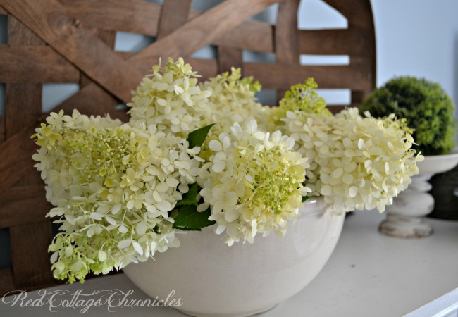 Easy DIY Hydrangea Arrangement