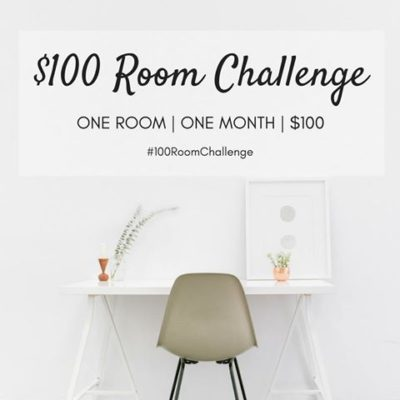 $100 One Room Challenge – Thrift Store Finds & A Dilemma