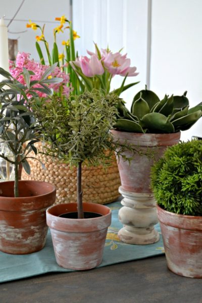 How to Add Aged Patina to New Clay Pots