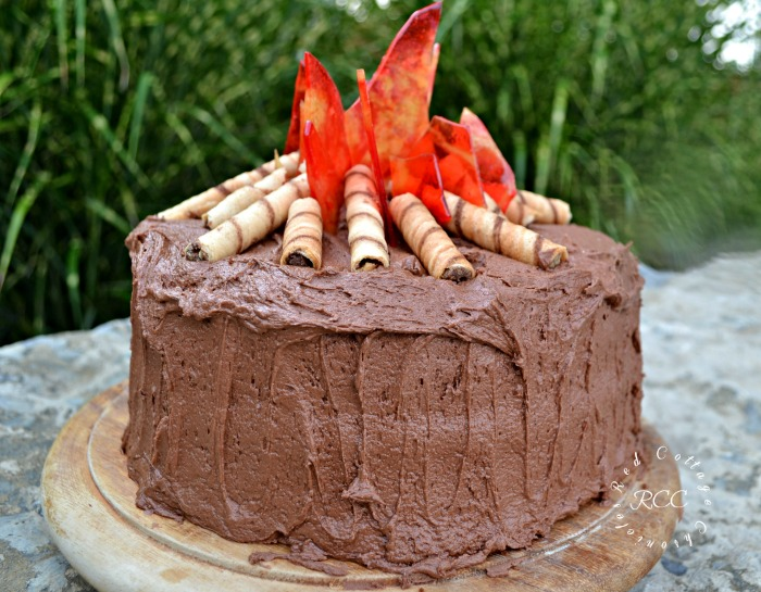 Enjoyable Campfire Cake 2 Red Cottage Chronicles Funny Birthday Cards Online Alyptdamsfinfo