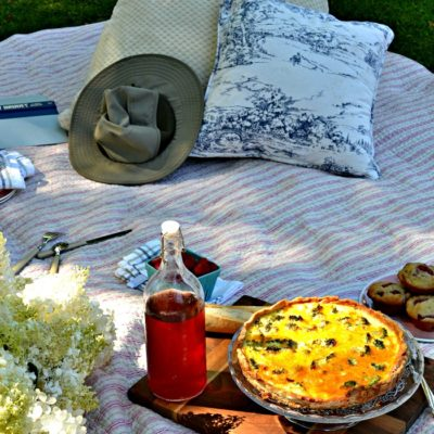 Why Not….Picnic in the Park