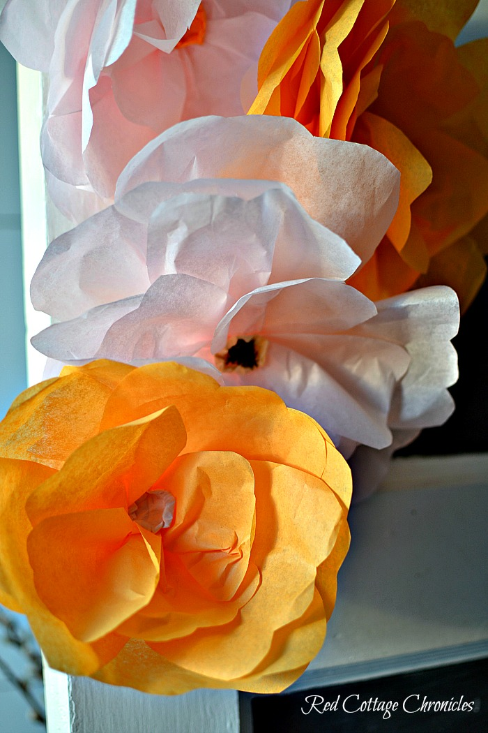 DY tissue paper flowers