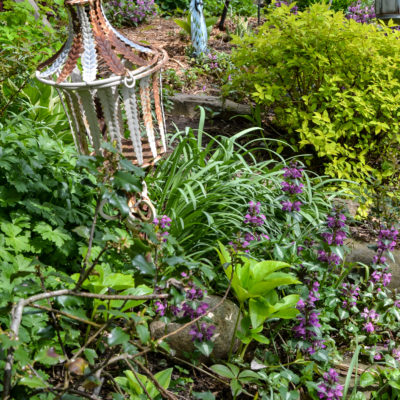 A Cozy Rustic Garden Collected Over Time