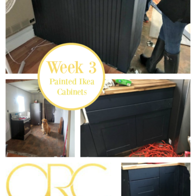 ORC Week 3 – Ikea Cabinets