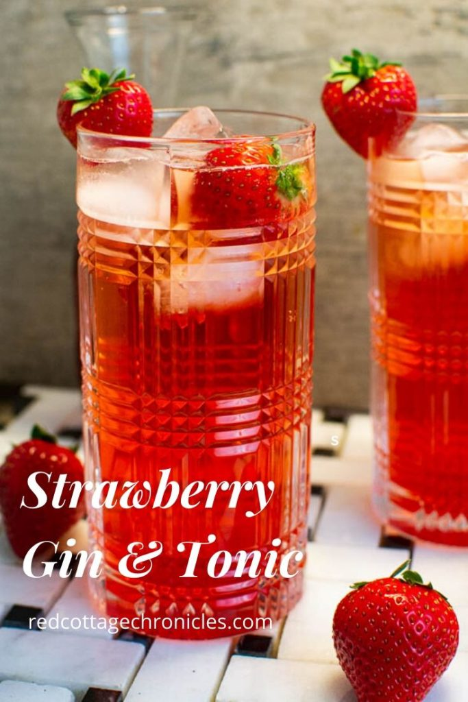 strawberry gin and tonic cocktail recipe