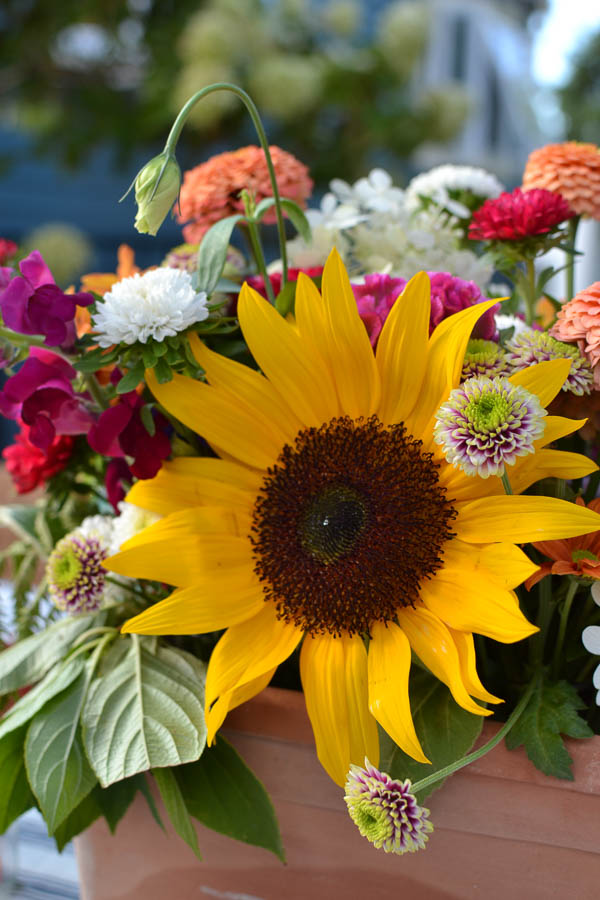 Colourful flower arrangement on a fall dining table