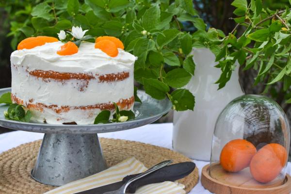 2 layer round orange poke cakee